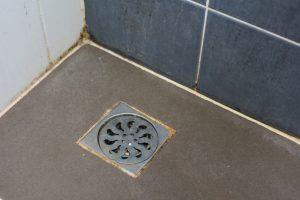 sewer drain